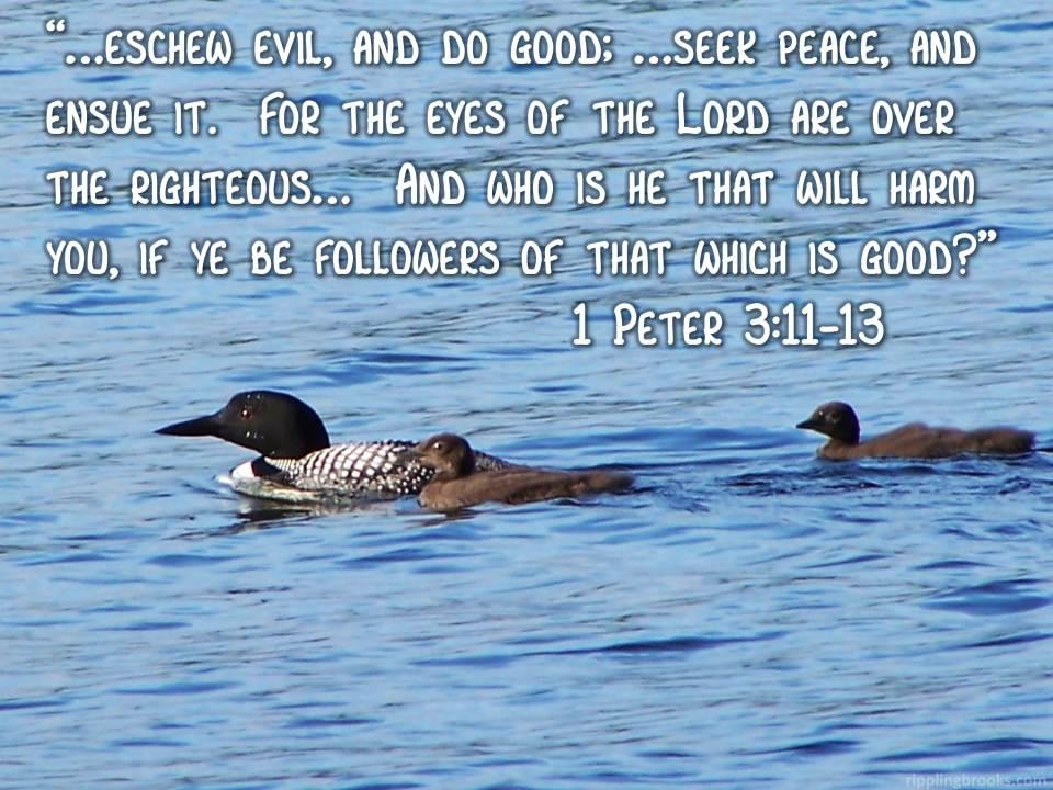 1 Peter 3:11-13