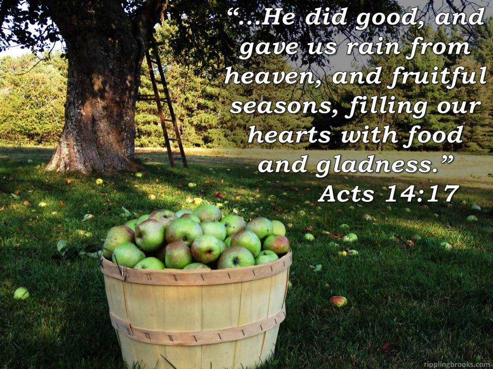 Acts 14:17