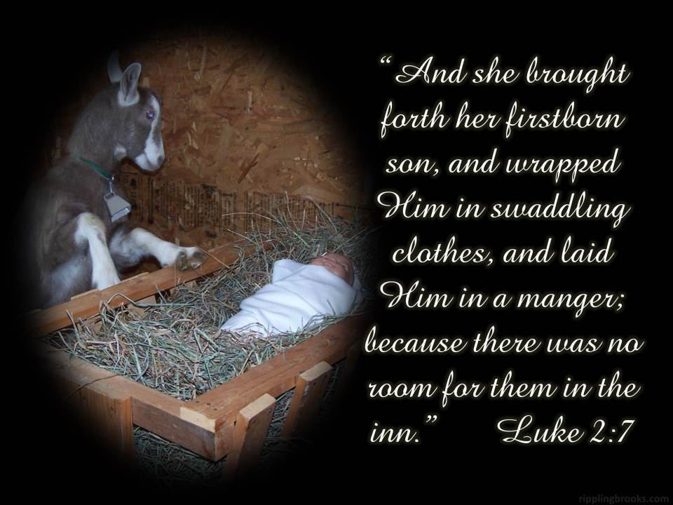 Luke 2:7