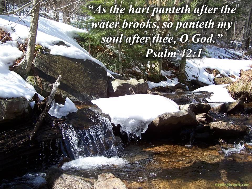 Psalm 42:1