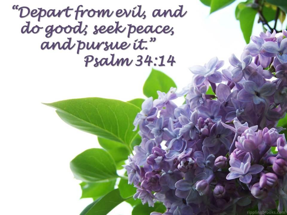 Psalm 34:14