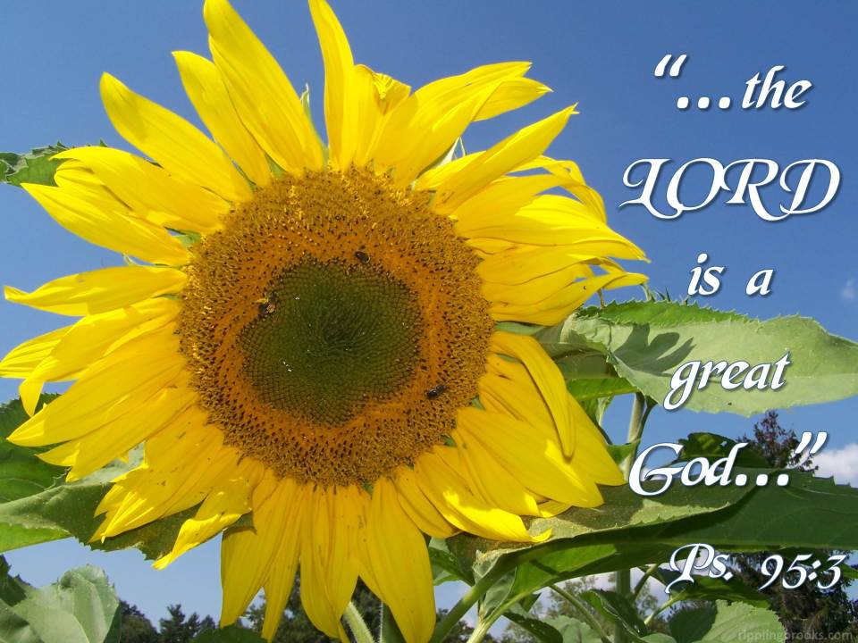 Psalm 95:3