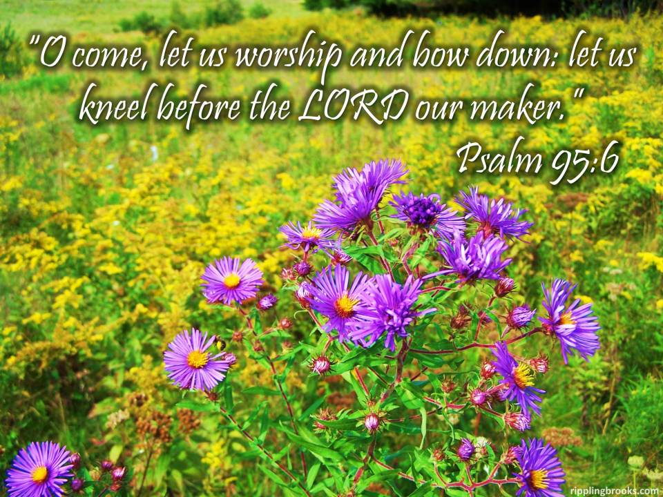 psalm-95-6