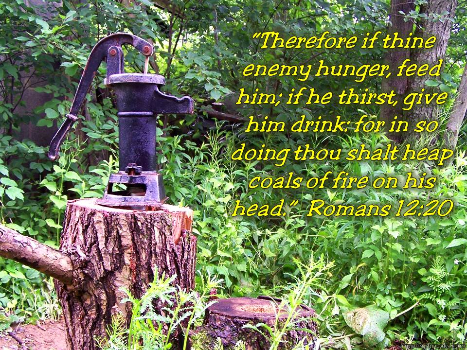 Romans 12:20