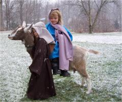 Mary_and_Joseph_-_goat