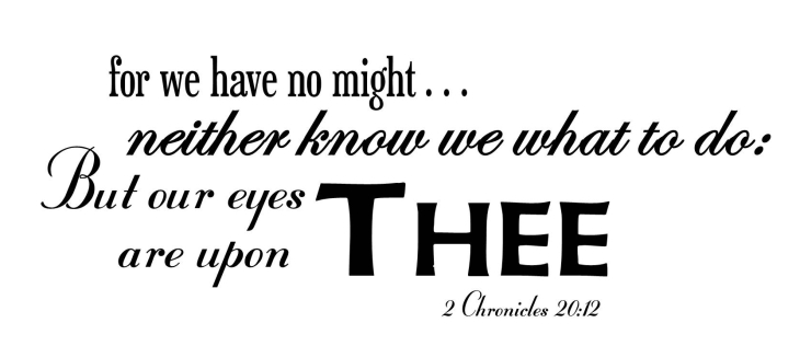 2 Chronicles 20:12b