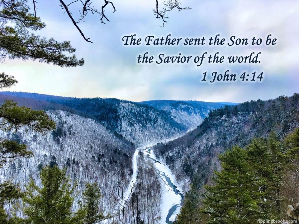 1 John 4:14